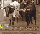 Moratalla Fiestas and Bull running 11th to 17th July